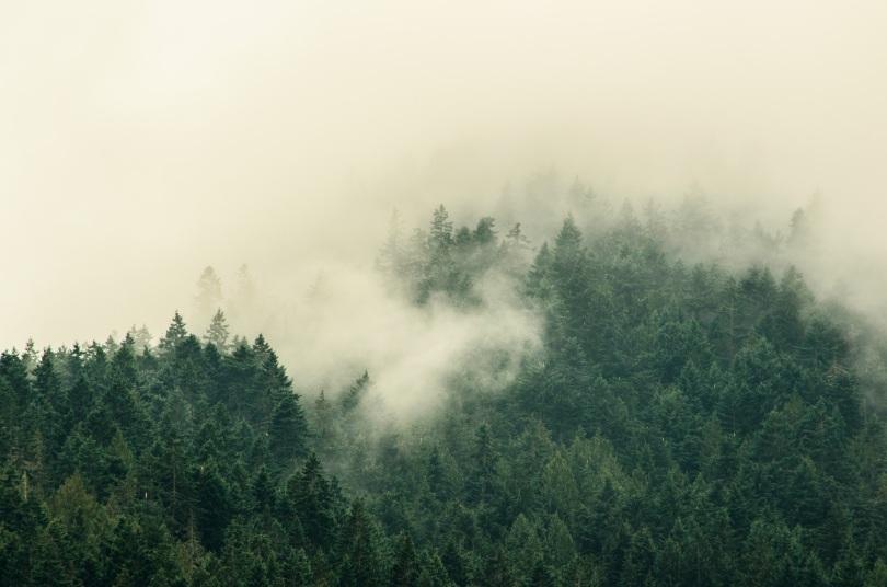 landscape telephoto 5