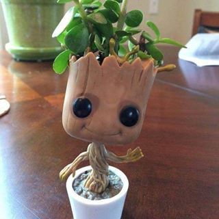 This is groot
