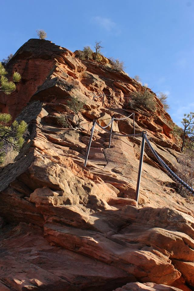 zions 117