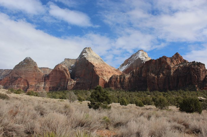 ZIONS 118