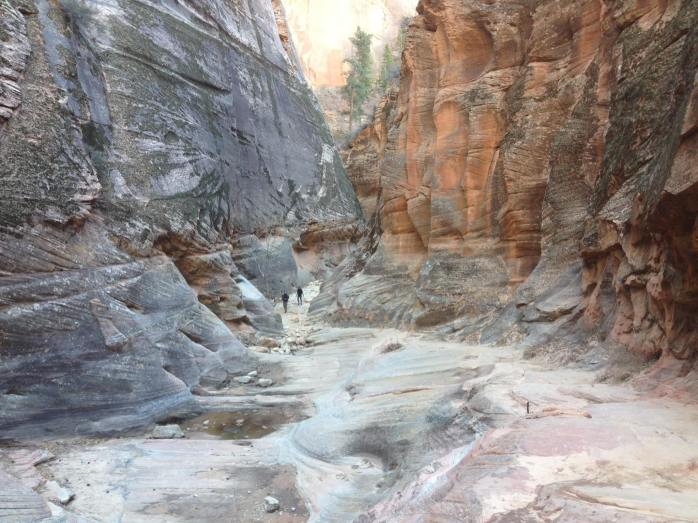 zions 124