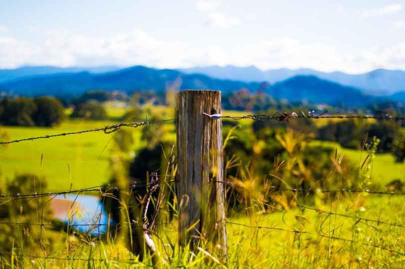 shallow focus photography of brown wooden pole with grey barb wires