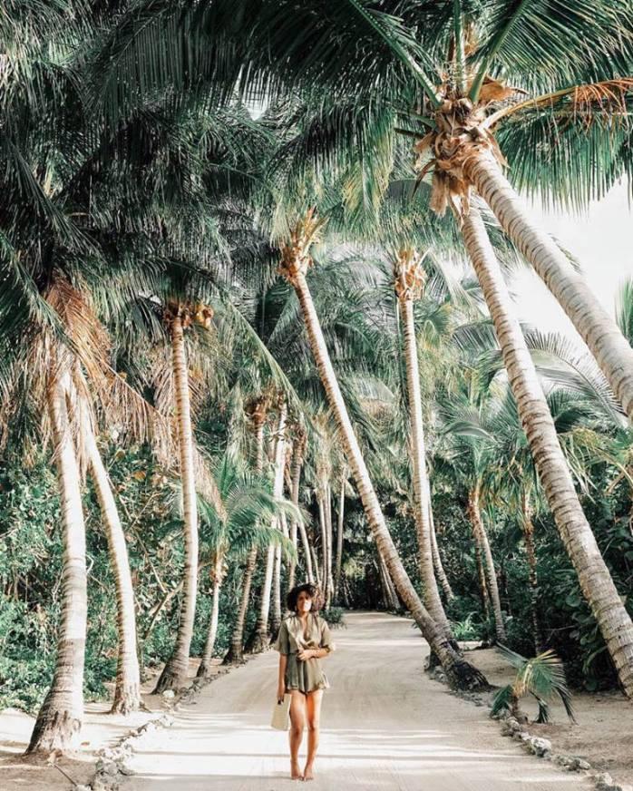 bahama 11
