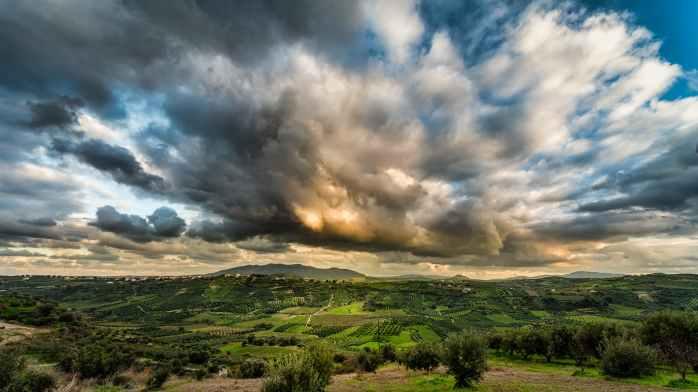 field under cloudy sky