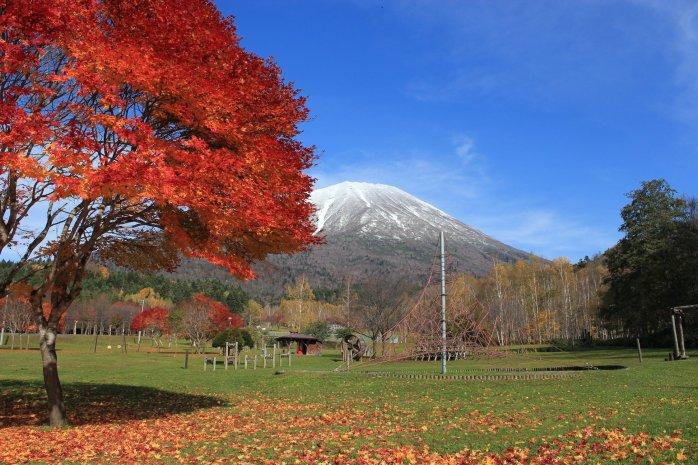 japan park 3