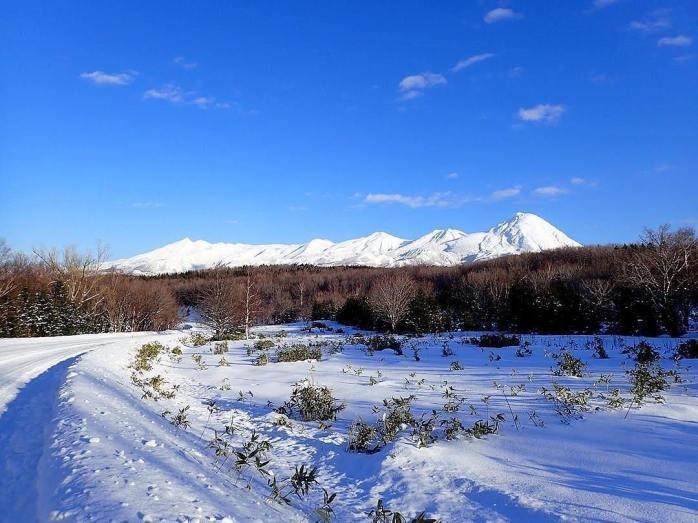 japan park 31