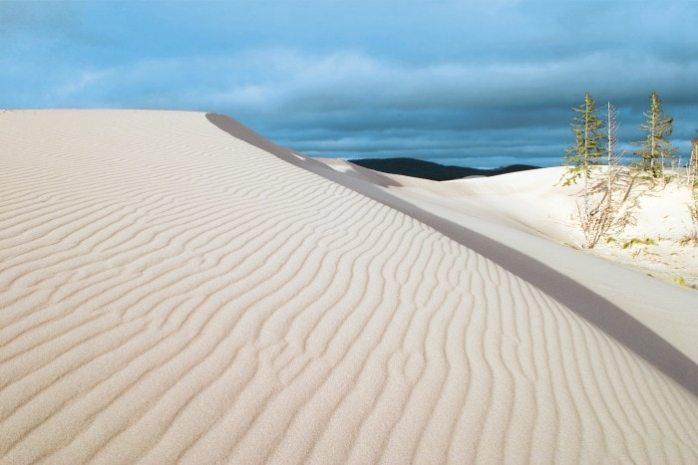 Oregon-Dunes-National-Recreation-Area-at-Umpqua-Dunes-John-Dellenback-Dunes-Trail
