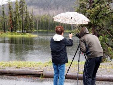 31629600-image-of-senior-women-holding-umbrella-over-photographer-head-while-taking-photos-of-small-lake-in-p